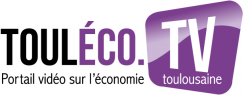 Logo Touléco TV
